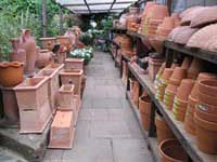 Buy Pots and containers