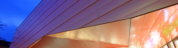 Light, flexible rainscreen panel