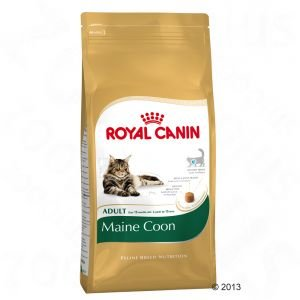 Buy Royal Canin Maine Coon Adult 10kg