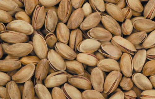 Buy Turkish Pistachio`s Good quality from Pistachios mother land GAZIANTEP.