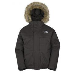 The North Face Men's Ice Jacket