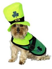 St Patricks Dog Costume