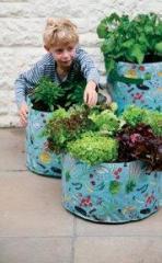 Childrens Vegetable Planter