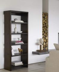 Narrow Bromo Bookcase