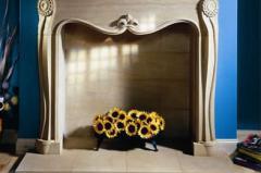 Tana Fireplace
