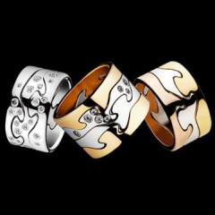 Fusion Rings