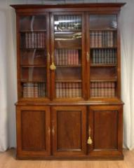 Antique Regency Rosewood Large Library Bookcase