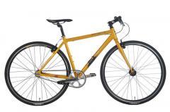 Iron Horse Transit 0.0 Bike