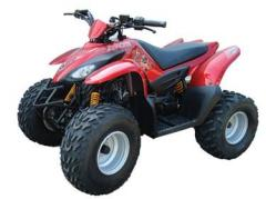 Quad Bike Apache RLX 100 'S'