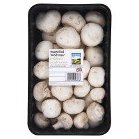 Essential Waitrose mushrooms