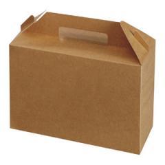 Large Kraft Carry pack