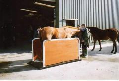 Horse Weighbridges