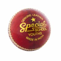 Readers Special School Cricket Leather Ball