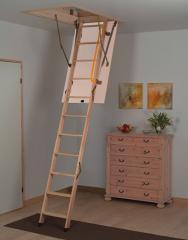 The Loft Ladder Combi