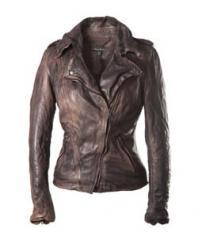 Athena Biker in Clinton Brown Jacket