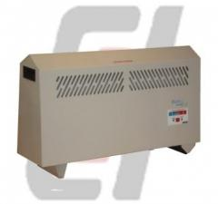 1KW Portable Electric Heater