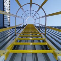 GRP Dynarail Ladders