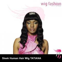 Sleek Human Hair Wig