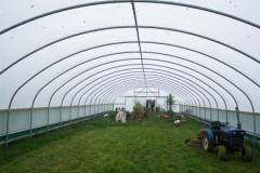 Commercial Polytunnel 30' Wide Single Span