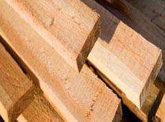 Raw Timber