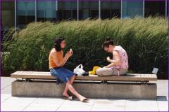 Outdoor seats and benches for office courtyard