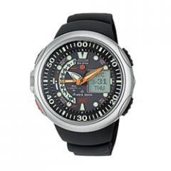 Citizen Eco Drive Aqualand 10F Watch