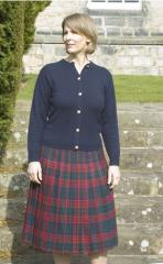 All Round Pleated Skirt