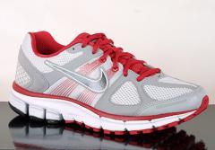 Air Pegasus+ 28 Running shoes