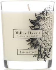 Bois Sauvage Home Candle