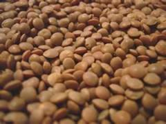 Lentile beans (braod and split)
