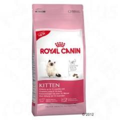 Royal Canin Kitten - Digestive Health 10kg