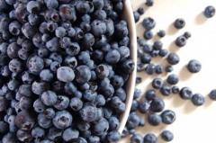 IQF Organic Bilberry Grade