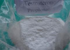 Testosterone propionate 99% raw powder
