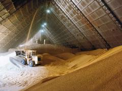 Soybean meal production Argentina