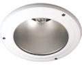 White Son IP54 Downlighters