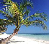 Order Cuba Holidays