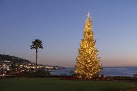 Order Christmas Holidays