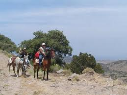 Order Horseriding tours