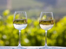 Order Peljesac Wine tour