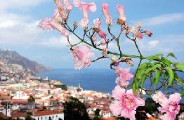 Order Madeira holidays