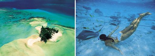 Order Underwater diving holidays