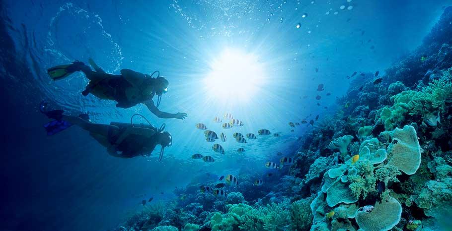 Order Scuba diving tour