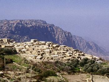 Order Petra holidays
