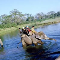 Order Nature Safari Tour