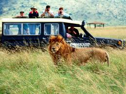 Order The Complete Tanzania Beach & Safari Tour