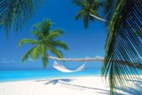 Order Tailor Made Holidays