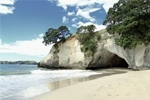 Order New Zealand Holiday Tours