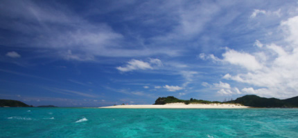 Order Full Day Diving Intro in Okinawa tour