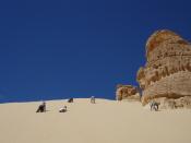 Order Sinai Endeavour tour
