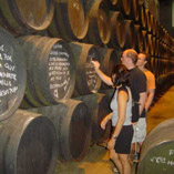Order Italian Wine Tours